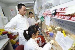 Профессор неврологии Школы медицины и здравоохранения Су-Чунь Чжан (стоит) разговаривает с сотрудниками своей лаборатории в Центре Вейсмана, готовящими культуры стволовых клеток.