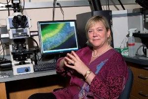 Занимаясь изучением механизмов репарации ДНК, профессор биологии и биологической инженерии Леона Д. Сэмсон (Leona D. Samson), PhD, ищет новые стратегии борьбы с раком.