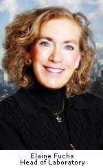 Элейн Фукс (Elaine Fuchs)