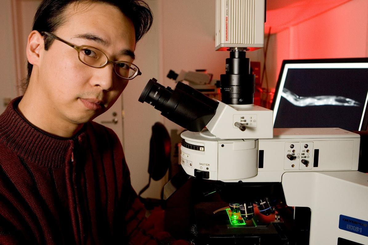 Ученые разработали магнитные молекулярные машины для доставки препаратов в раковые опухоли